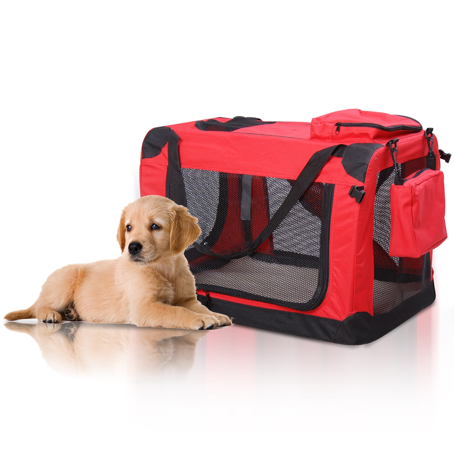 Dog Carriers & Strollers